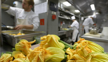 Kitchen -  Zucchini flower